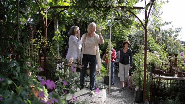 Im Showgarten vom GARTENBIJOUX können Gartendekorationen und auch Pflanzen direkt ausgewählt und gekauft werden.