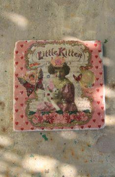00_littlekitten