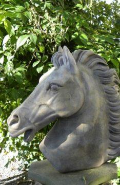 11_pferd