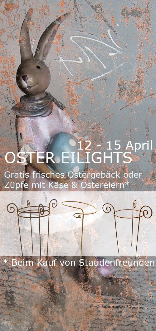 osterflyer_web