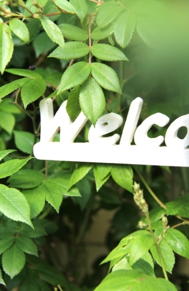0_welcome_detail