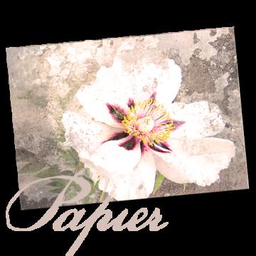 Bijoux-Papeterie für Händler