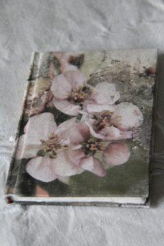 No 3003, Notizbuch Apfelblüte